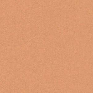 6813 Оранжево